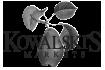 logo_kowalskis